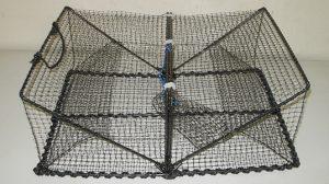 クロタコ籠